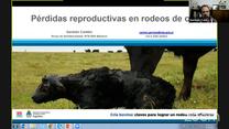 Perdidas reproductivas en rodeos de cria