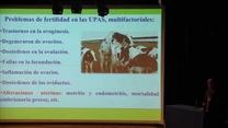 Factores que provocan baja fertilidad en vacas