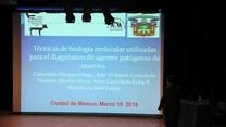 Diagnóstico de agentes patógenos de Mastitis: Técnicas de biología molecular