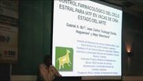 Ciclo estral en la vaca de cría: Control farmacológico