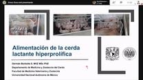 Nutrición y alimentación de la cerda lactante: Dr. German Borbolla Sosa