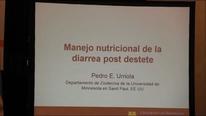 Manejo nutricional de la diarrea Postdestete, Video de Pedro Urriola