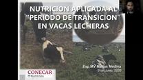"Nutrición aplicada al ""periodo de transición"" en vacas lecheras, Matias Medina"