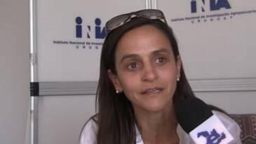 Bienestar Animal: Impacto de Calidad en Carne. Marcia Del Campo (INIA Tacuarembó)