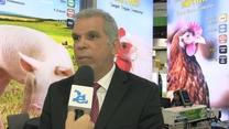 Cuadros clínicos asociados con micotoxicosis en avicultura, M.V. Manuel Contreras