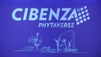 Novus presenta en Chile su nueva fitasa: CIBENZA PHYTAVERSE