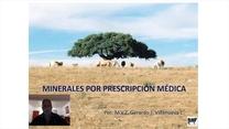 Minerales por prescripción médica