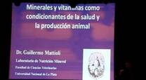 Minerales y vitaminas, condicionantes de salud y producción animal. Guillermo Mattioli