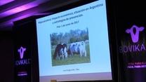 Hipocalcemia: Impacto económico, situación en Argentina y estrategias de prevención. Juan Matías Grigera