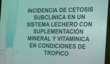 Cetosis Subclínica en Sistema lechero: Katherine Garcia Alegria