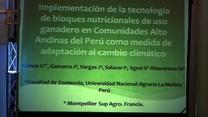 Bloques nutricionales como medida de adaptación al cambio climático