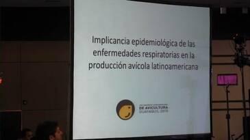 Enfermedades respiratorias en la produccion avícola, Implicancia epidemiológica