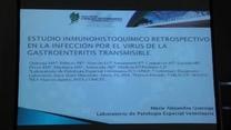 Gastroenteritis transmisible del cerdo por Coronavirus