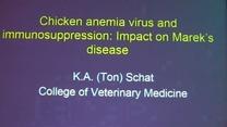 Anemia e Inmunosupresión en Aves: Impacto de Marek