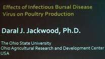 Infección de la Bolsa de Fabricio, Daral Jackwood en ANECA 2014