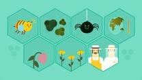 Agricultores y apicultores unidos por la salud de los polinizadores