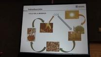 Usos del peletizado en biomasas y residuos de granjas