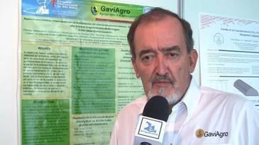 silos bolsa para almacenar arroz con cáscara seco. Juan Gaviria (Gaviagro)