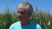 Manejo de fungicidas: Marcelo Carmona