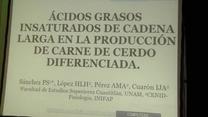 Carne de cerdo diferenciada: El papel de los acidos grasos insaturados