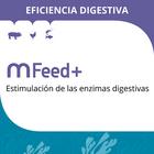 MFeed+