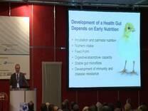 Alimentos e Estratégias Nutricionais para o Controle da Saúde Intestinal.