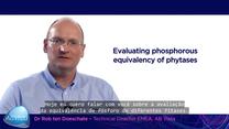 Diferentes fitases: avaliação da equivalência de fósforo