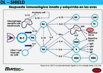 beta-GLUCANOS como Inmunomoduladores