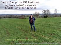 Vendo campo Agricola de 155 hectáreas sur de Chile