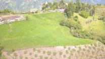Aguacate Hass y lecheria especializada 2000 msnm