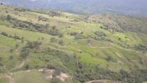 Pandy Cundinamarca ganadería de cría 1200 msnm pasto brachiaras