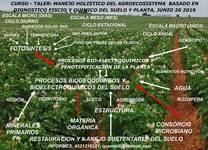 CURSO TALLER MANEJO HOLISTICO DEL AGROECOSISTEMA BASADO EN EL DIAGNOSTICO DEL PATRIMONIO SUELO