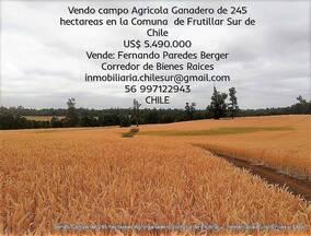 Vendo Campo
