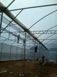 instalacion invernaderos