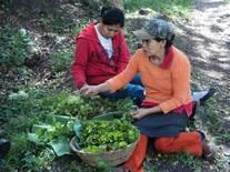 Chilo y su Mama la Anselma en el trasplante de café2012
