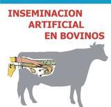 costos para realizar una inseminacion bovina