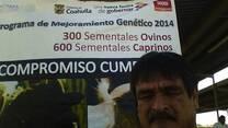 venta de sementales caprinos en allende coahuila