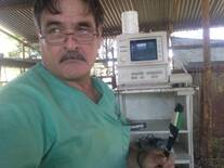 ultrasonido en ovinos