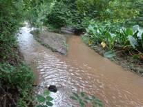 rio quiquito