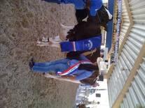 Gran Campeona Holstein