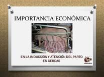 IMPORTANCIA ECONÓMICA EN LA INDUCCIÓN Y ATENCIÓN DEL PARTO
