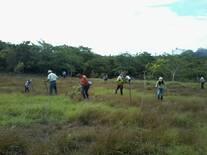 Capacitación a productores y productoras. Establecimiento de parcelas agro-pastoril.
