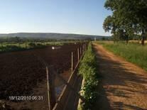 confinamento bovinos região de chuvas de verão