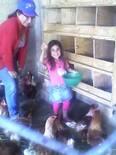 recolecta de huevos, por Valeria Victoria.