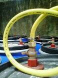 salida de gas combustible  obtenido en producción de biol