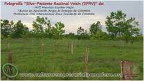 Silvo-Pastoreo Racional Voisin (SPRV)