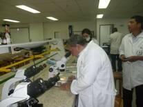 Laboratorio de Biotecnología UNAD - Bogotá.