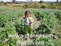 www.agriperia.com