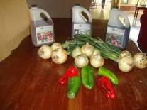 En la mesa de mi casa con mis productos y los productos Organicos de Bio Karol