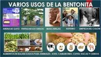 BENTONITA PARA ALIMENTOS BALANCEADOS Y FERTILIZAR TIERRA